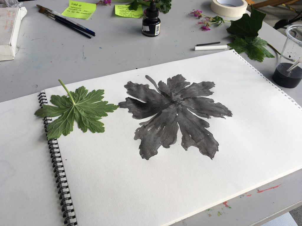 ink drawing of leaves