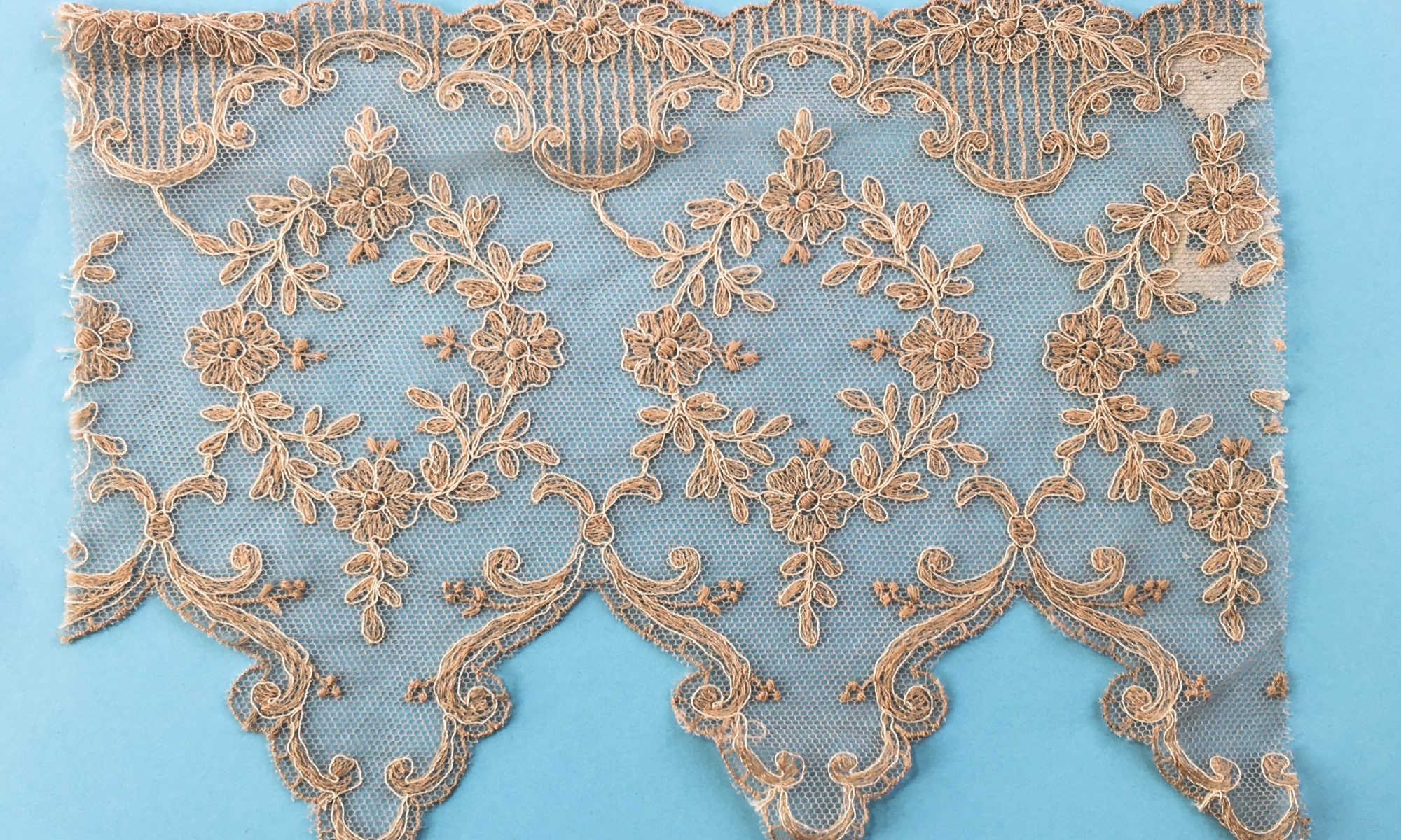 a picture of embroidered lace