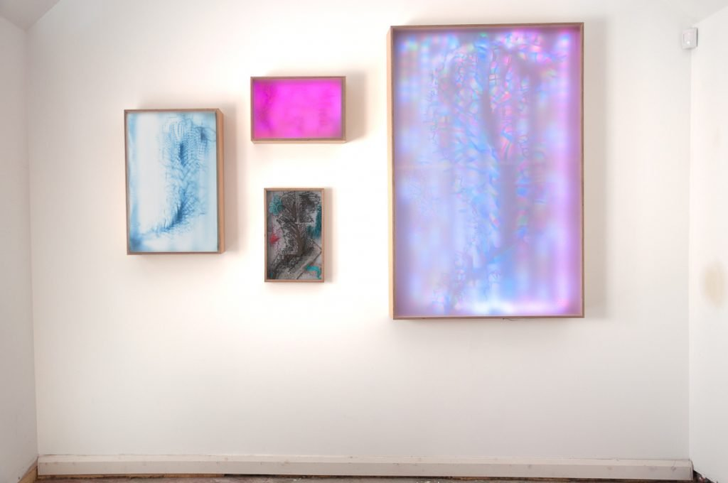 Four colourful lightboxes hang on a gallery wall
